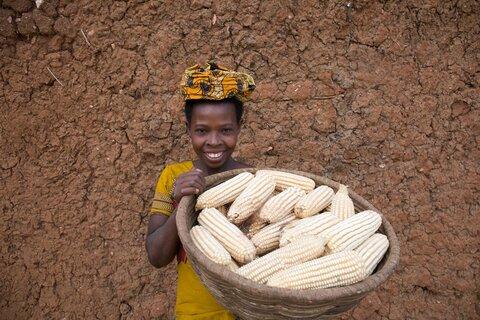 Rwanda: Når madspild mindskes stiger bønders indkomst