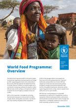 World Food Programme - Oversigt 2020