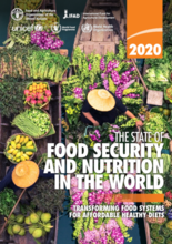 The State of Food Security and Nutrition in the World (SOFI) Rapport 2020